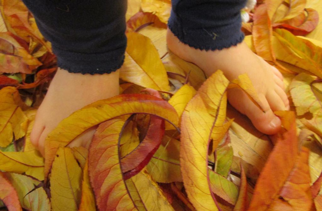 Nidi Predaia - A piedi nudi sulle foglie